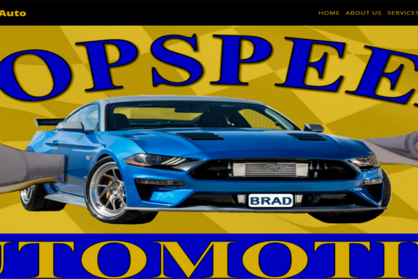 topspeedauto150811244-22C3-3CF3-17F8-279EEA9A6B77.png